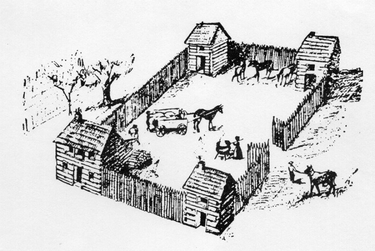 lot with horses and buggies